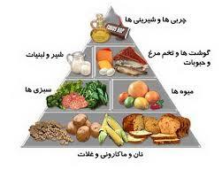 مقاله درمورد بیوشیمی مواد غذایی و تغذیه انسانی